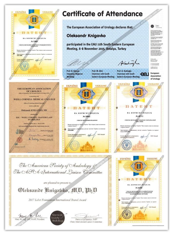 Участие в международных конференциях и стажировках